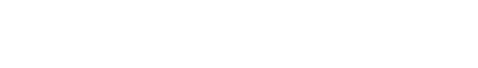 Nittany Eye Associates Logo